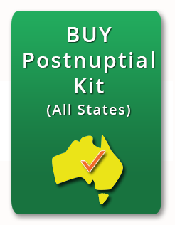 postnuptial agreement download